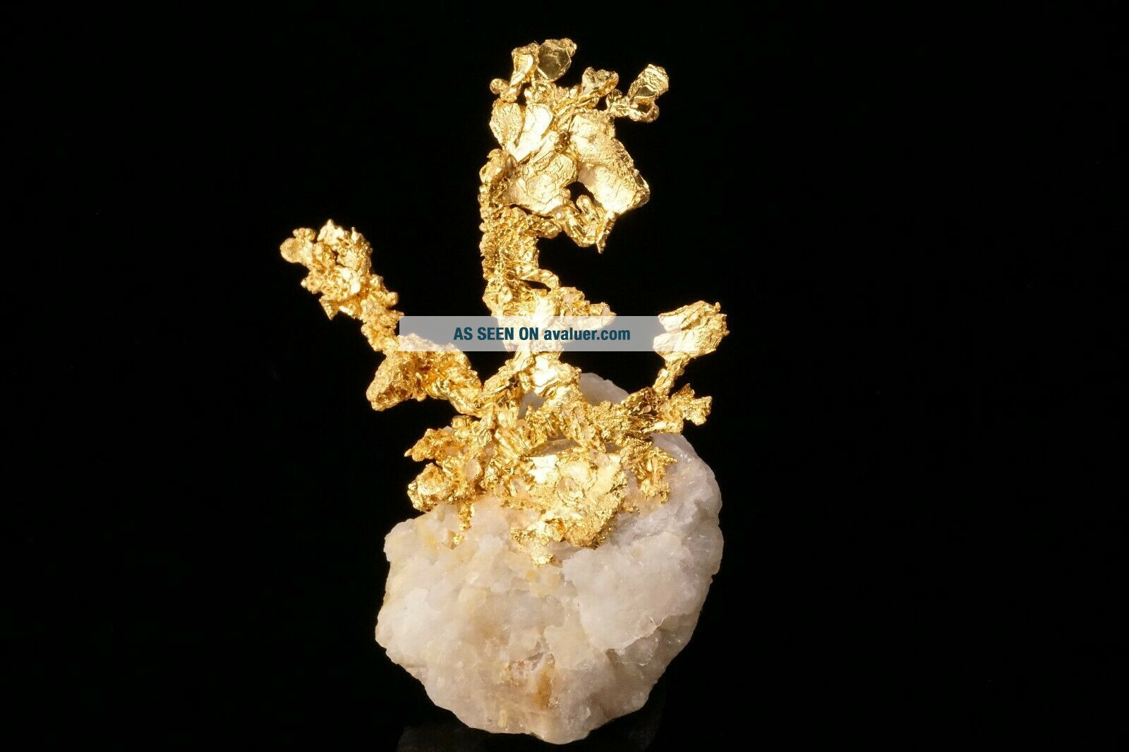 EXTRAORDINARY Native Gold Crystal Cluster on Quartz EAGLES NEST MINE,  CALIFORNIA